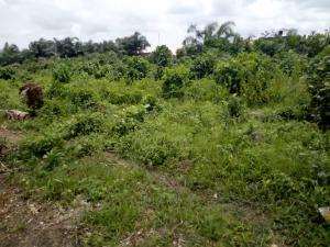 Land for sale seagate estate, behind spar Ikate Lekki Lagos