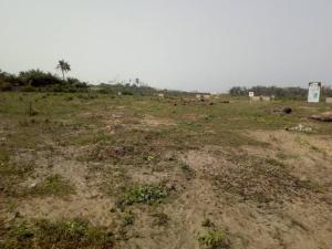 Commercial Land for sale Institute And Research Piwoyi Behind Obasanjo Space Centre & Lugbe Shoprite Abuja Lugbe Abuja