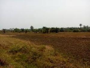 Land for sale ILOTI VILLAGE ALONG EPE I.ODE RD Alekunifesowapo Odogbolu Ogun