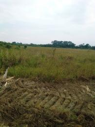 Land for sale Adeniyi Jones Ikeja Lagos