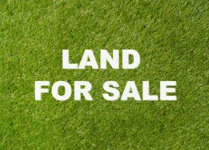 Commercial Land for sale Oba Akran Ikeja Lagos