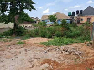 Residential Land Land for sale Agric Quarters, Independence Layout, Enugu Enugu Enugu