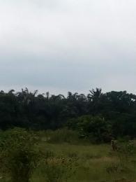 Mixed   Use Land Land for sale 93 Acres Clearing & Road Work ,investor Get 192 Plots, At Lekki Eleko, The Land Is Facing Express , Sheared Boundry With Emen Estate Land 08063022968 08080842955 Lekki Phase 2 Lekki Lagos