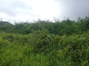 Serviced Residential Land Land for sale Off Lasena Road, Riverview Estate Opic Isheri North Ifo Ogun