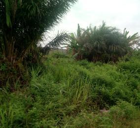 Mixed   Use Land Land for sale Block 25, Lekki Scheme 2, Lekki Phase 2 Lekki Lagos