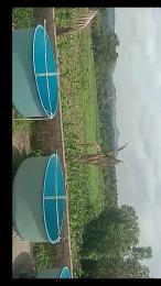 Commercial Land Land for sale Kaduna Abuja express way Kagarko Kaduna