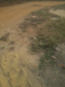 Land for sale Ode Omi Okun Eluju Arin Village Ibeju Lekki Lagos Eluju Ibeju-Lekki Lagos