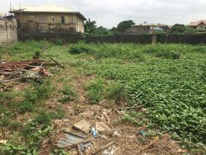 Residential Land Land for sale Within a close Off Alapere estate road Alapere Kosofe/Ikosi Lagos