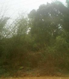Land for sale Ewekoro, Ogun Ewekoro Ogun