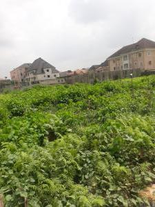 Residential Land for sale Peace Estate Ago palace Okota Lagos