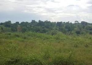 Joint   Venture Land Land for sale Adeyemi Lawson; Old Ikoyi Ikoyi Lagos