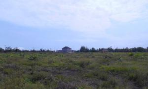 Residential Land Land for sale Fountain Springville Estate; Monastery Rd, Sangotedo Ajah Lagos