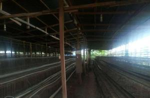 Commercial Property for sale Laspotech Road Ikorodu Lagos