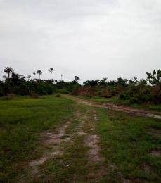 Joint   Venture Land Land for sale science Road, Unilag Estate, Isheri, Gra, Magodo Kosofe/Ikosi Lagos
