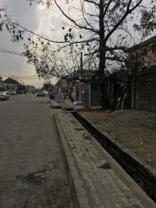 Mixed   Use Land Land for sale Lake veiw estate phase 1 Apple junction Amuwo Odofin Lagos