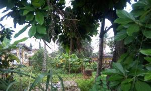 Residential Land Land for sale New Bodija Ibadan Oyo