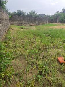 Mixed   Use Land for sale Festac Amuwo Odofin Lagos