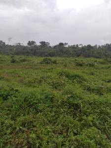 Mixed   Use Land Land for sale Mirinwanyi  Oyigbo Rivers