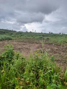 Mixed   Use Land Land for sale Odogbawojo Epe Road Epe Lagos