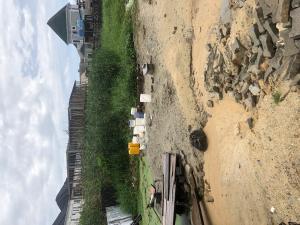 Mixed   Use Land for sale Ologolo Ologolo Lekki Lagos