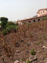 Commercial Property for sale Beside Alimosho local government Ejigbo Ejigbo Lagos