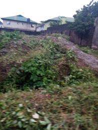 Residential Land Land for sale Elshadi  Akesan Alimosho Lagos