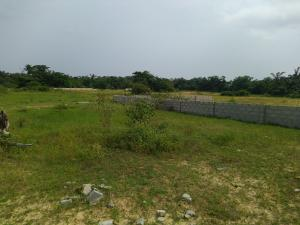Commercial Land for sale Along The Express. Between Festac 2nd And 3rd Gate. Festac Amuwo Odofin Lagos