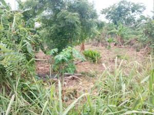 Commercial Land Land for sale Kebbi House wuse 2, FCT ABUJA. Central Area Abuja