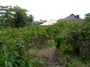 Residential Land for sale Lucas Quarters Aroro Road Ojoo Barracks Ojoo Ibadan Oyo