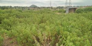 Mixed   Use Land Land for sale Gude District Apo Abuja