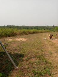Commercial Land Land for sale Besides Nigerian sinotrucks assembly plant and vitafoam company Ifo Ifo Ogun