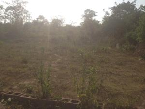 Residential Land Land for sale Idi ahun elebu off Akala express Ibadan  Akala Express Ibadan Oyo