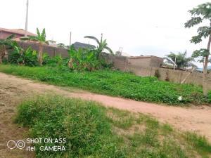 Land for sale S Ayobo Ipaja Lagos