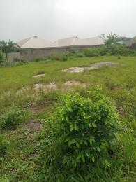 Mixed   Use Land for sale Illage Igbogbo Ikorodu Lagos