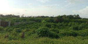 Commercial Land for sale Off Dangote Refinery Express Way Free Trade Zone Ibeju-Lekki Lagos
