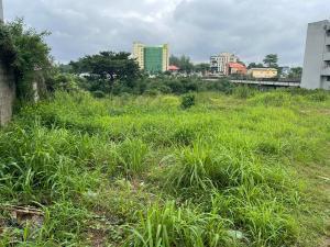 Mixed   Use Land for sale Opebi Road Opebi Ikeja Lagos