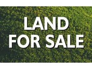 Residential Land Land for sale Off Mobil Road Ilaje Ajah Lagos
