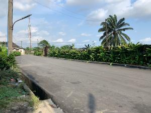 Land for sale At Rukpakwolusi New Layout Opposite Naf Harmony Estate Port Harcourt Rivers