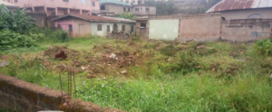 Mixed   Use Land Land for sale - Oke-Ira Ogba Lagos