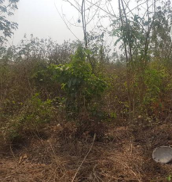 Mixed   Use Land Land for sale Omi Adio, Ibadan Oyo