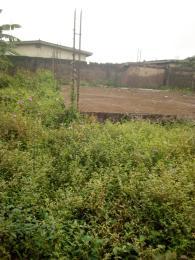 Residential Land Land for sale In an estate Mangoro Ikeja Lagos