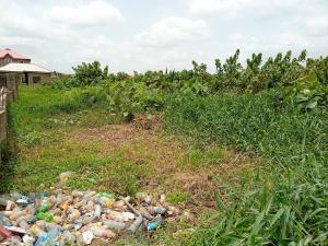 Mixed   Use Land for sale At Off Agiliti Mile 12 Road Mile 12 Kosofe/Ikosi Lagos