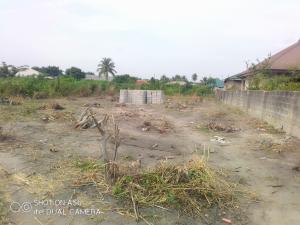 Residential Land Land for sale Macaulay along igbogbo bayeku road Igbogbo Ikorodu Lagos