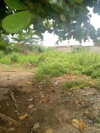 Commercial Land Land for sale Akinola Iyana Ipaja Ipaja Lagos