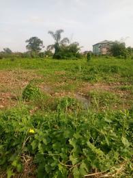 Mixed   Use Land Land for sale Ikola near command  Ipaja road Ipaja Lagos