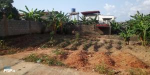 Mixed   Use Land Land for sale Imeran Abule Egba Abule Egba Lagos
