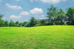 Residential Land for sale Of Clem Road Ijaiye Ojokoro Abule Egba Lagos
