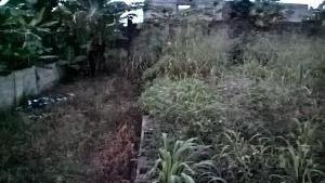 Land for sale Mopol Junction Ayobo Ipaja Lagos