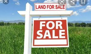 Residential Land for sale Onibuore Street,ikate Kilo-Marsha Surulere Lagos