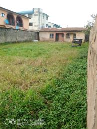 Residential Land Land for sale Onimaba estate opp igando high sch college bus stop Igando Ikotun/Igando Lagos